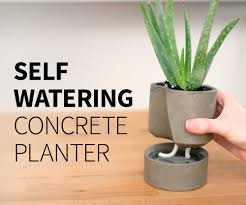 Self Watering Self Watering Concrete Planter 6 Steps With Pictures