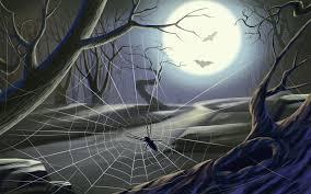 spider web wallpaper wallpapersafari