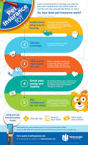 home insurance quote nationwide pet insurance 101 infographic