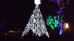 silver dollar city christmas on main street tree lighting branson