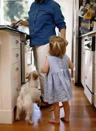 will dogs scratch laminate flooring care the daily puppy