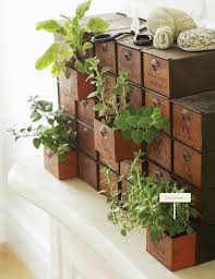 Indoor Herb Planters by 263 Best Fab Ideas For Herb Containers Images On Pinterest