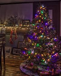 tree shop best tulle trees ideas on
