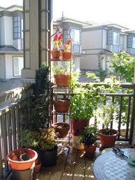 balcony garden with terracotta potted plants a balcony garden