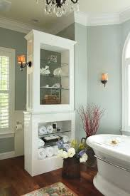 Master Bathroom Remodeling Ideas Colors 192 Best Bathroom Remodeling Ideas 1 Images On Pinterest