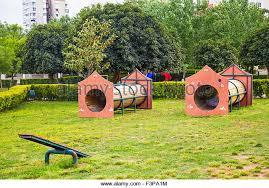 Dog Playground Equipment Backyard by Dog Play Area Sign Stock Photos U0026 Dog Play Area Sign Stock Images