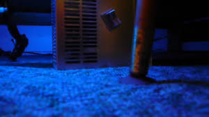 Neon Lights For Bedroom Blue Neon Light Bed