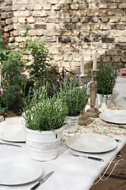 Potted Plants Wedding Centerpieces by 248 Best Bar Mitzvah Ideas Images On Pinterest Bar Mitzvah