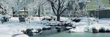 waterscene water gardening do you need to shut your pond