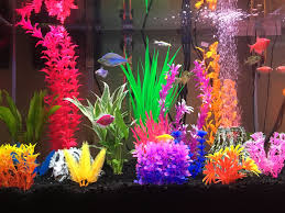Colorful glofish tank Fish and Aquariums Pinterest