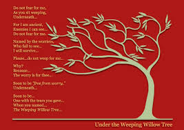 the weeping willow a poem about a tree lax rhetorica