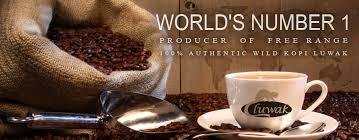 Luwak Coffee kopi luwak coffee best tasting coffee brand in australia