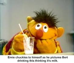 Ernie Meme - 49 dirty humored bert and ernie pics for your sunday entertainment