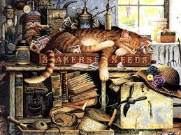 63 best cat of at the museum charles wysocki images on