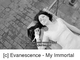 Immortal Meme - these wounds seem to this pain is just too real c evanescence my