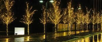 christmas christmas light installation led lights dallas tx cost