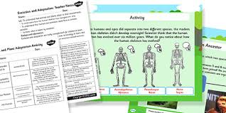 evolution and adaptation year 4 task setter powerpoint