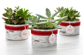 easy diy homemade holiday gifts container stories