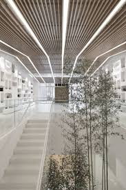 111 best 天花 ceiling images on pinterest architecture
