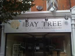 a contemporary painted shop front sign for this chelmsford