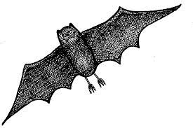 free halloween gif mormon share halloween bat 2