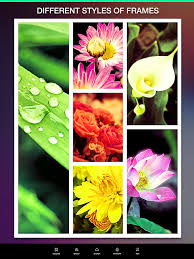 plant layout editor free download layout camera collage photo collage maker photo editor ipa