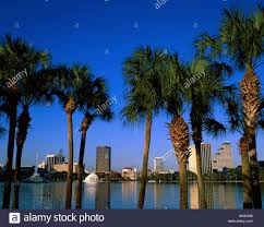 city skyline lake eola u0026 fountain palm trees orlando florida