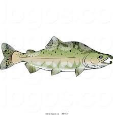 royalty free fishing stock logo designs