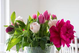 Gambar menanam daun bunga bunga tulp warna warni berwarna