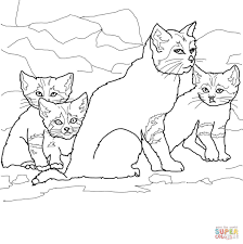 sand cat kittens with mother coloring page free printable