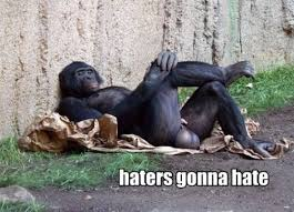 Funny Gorilla Memes - haters gonna hate assorted stuff pinterest meme and viral videos