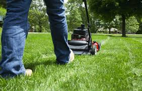 lawns are a soul crushing timesuck and most of us would be better