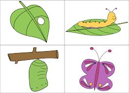 kindergarten giggles u0027n u0027grins butterflies