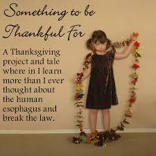 felt thanksgiving crafts felt u2013 american felt u0026 craft blog