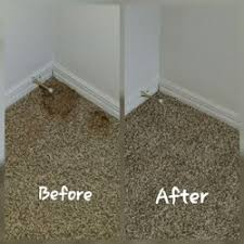 rowell and sons carpet upholstery cleaning 11 reviews carpet