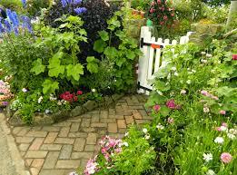 pam u0027s english cottage garden grafton cottage an iconic english