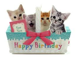 birthday basket kitties in basket happy birthday pop up melody card premium