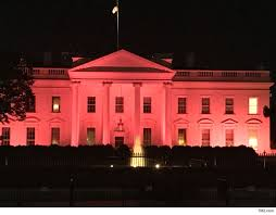 white house lights up in pink to kick breast cancer awareness