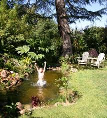 Backyard Swimming Ponds by 158 Best Pools Images On Pinterest Swimming Ponds Natural Pools