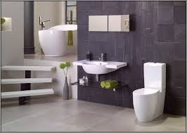 Bathroom Tile Colour Ideas by Best Color Tile For A Small Bathroom Painting Best Home Design