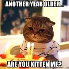 Kitty Meme Generator - birthday cat meme generator