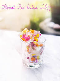 Floral Food by Floral Ice Cubes Diy U2014 Thrive Where Planted