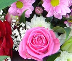 Flower Delivery Houston Rugby Flower Delivery Testimonials