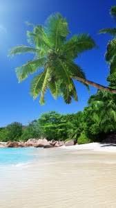 iphone 6 beach wallpapers hd desktop backgrounds 750x1334 images