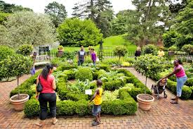 Ny Botanical Garden Membership Botanical Gardens New York Discoverchrysalis