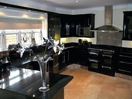 black cabinets with black appliances black kitchen cabinets chic black kitchen cabinets and futuristic