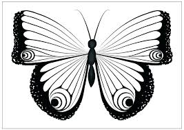 coloring page butterfly monarch monarch butterfly coloring page monarch butterfly coloring page
