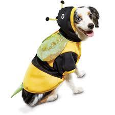 dog hoodies u0026 sweatshirts hoodies for dogs u0026 puppies petco