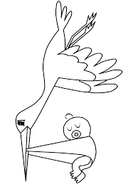 birds stork animals coloring pages u0026 coloring book