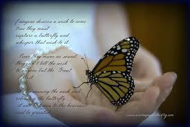 butterfly release for weddings